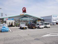 コメリハード&グリーン大山店