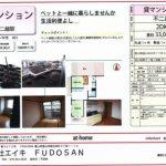 【富山市中市1丁目3-34 貸マンション2DK】ペット相談。ルーフバルコニーでの寛ぎ。