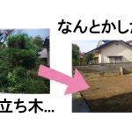 庭を綺麗な更地にしたい!そんな時の有効な解決法は…?